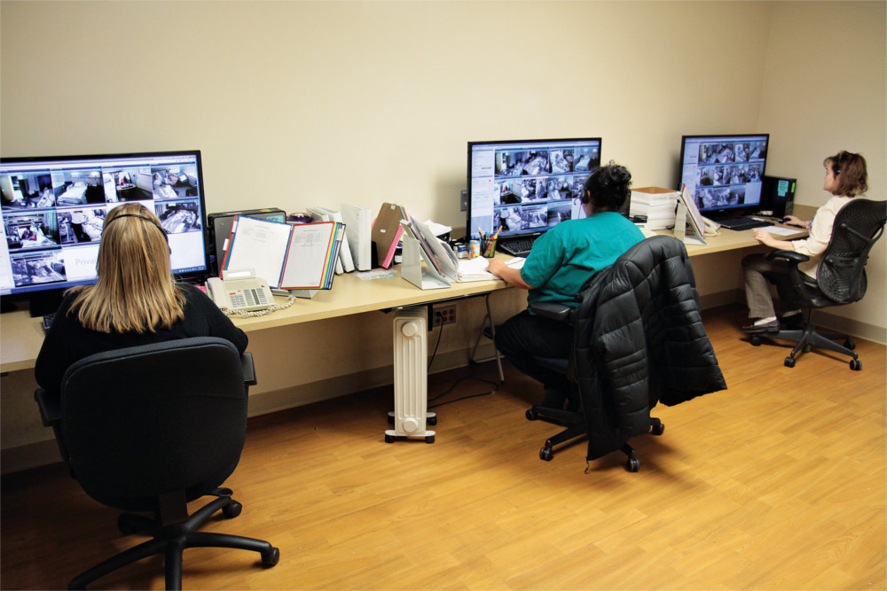 Company meets pandemic need with free monitoring licenses